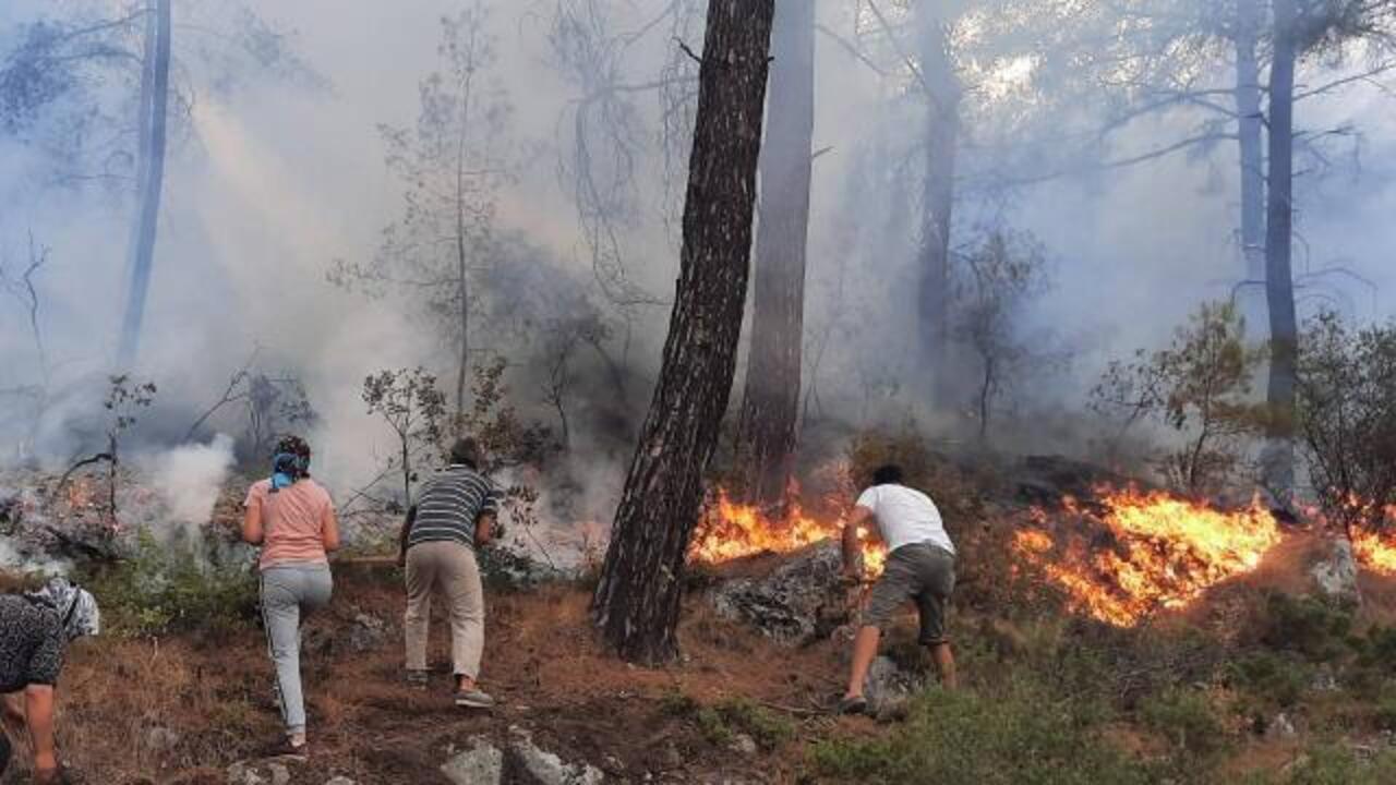 Muğla'nın Seydikemer ilçesinde orman yangını