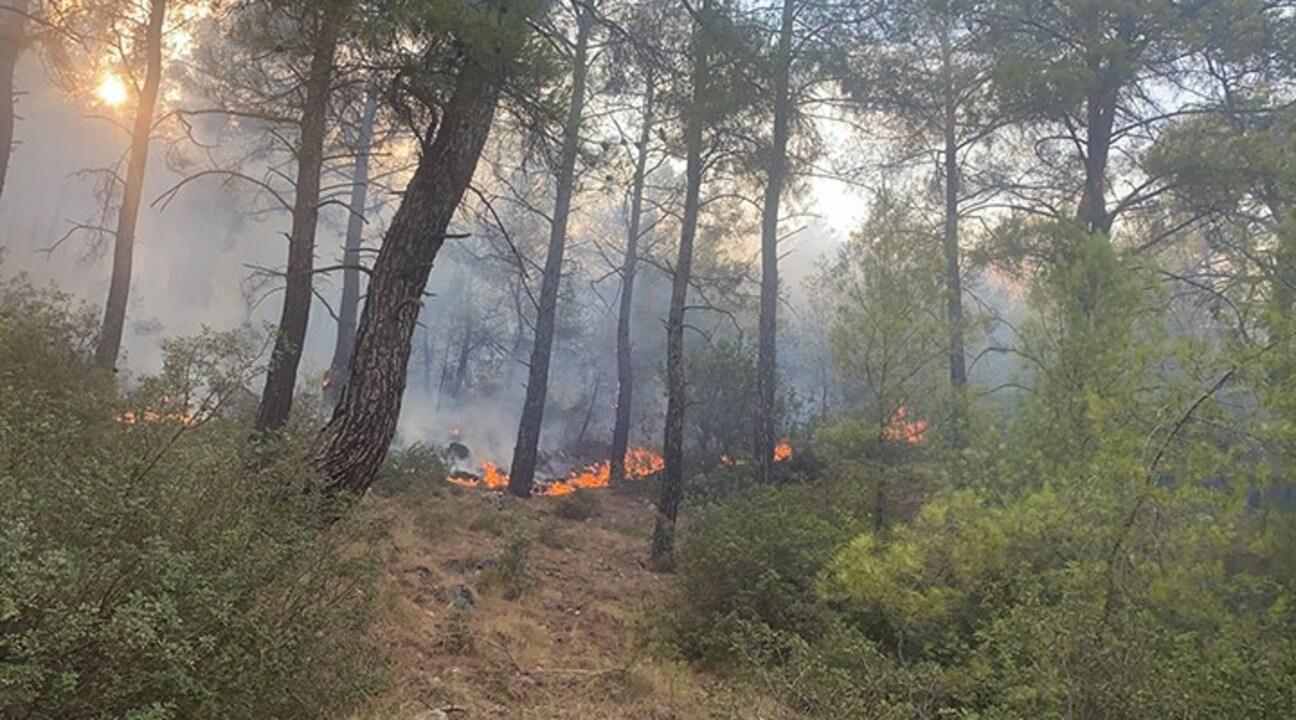 Seydikemer'de söndürülen yangın yeniden başladı