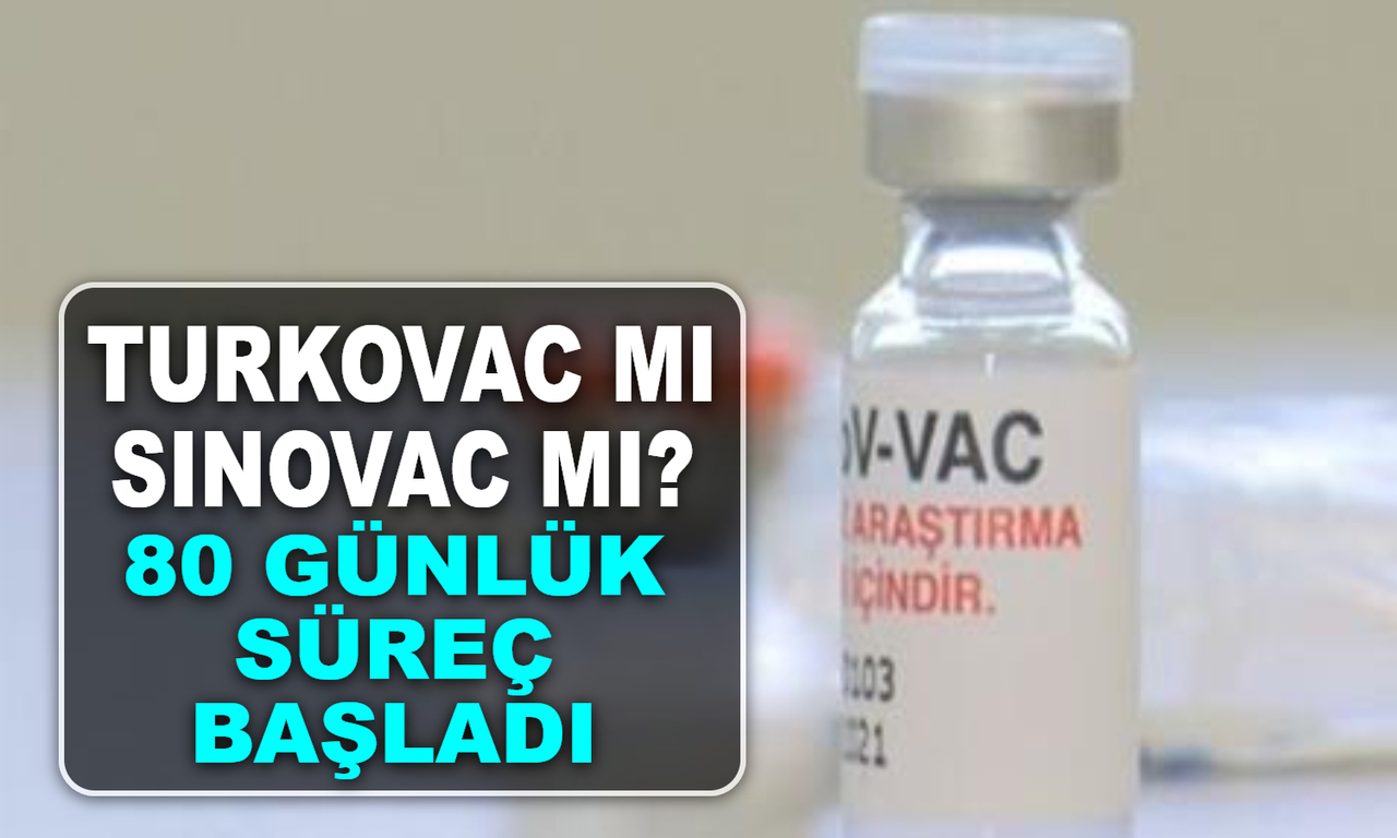 Turkovac aşısı mı? Sinovac aşısı mı? 80 gün sürecek kritik süreç başladı..