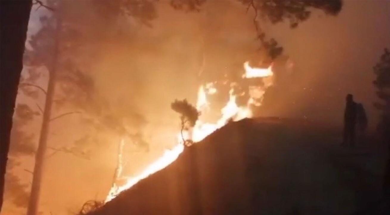 Balıkesir'in Edremit ilçesinde başlayan orman yangını son hız devam ediyor