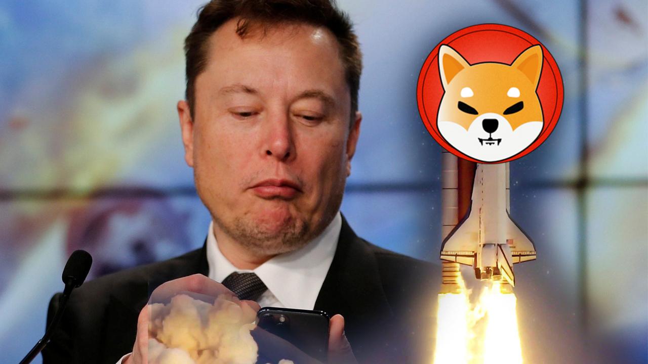 Elon Musk Shiba Inu hakkında ne dedi? Elon Musk'tan önemli Shiba Inu açıklaması