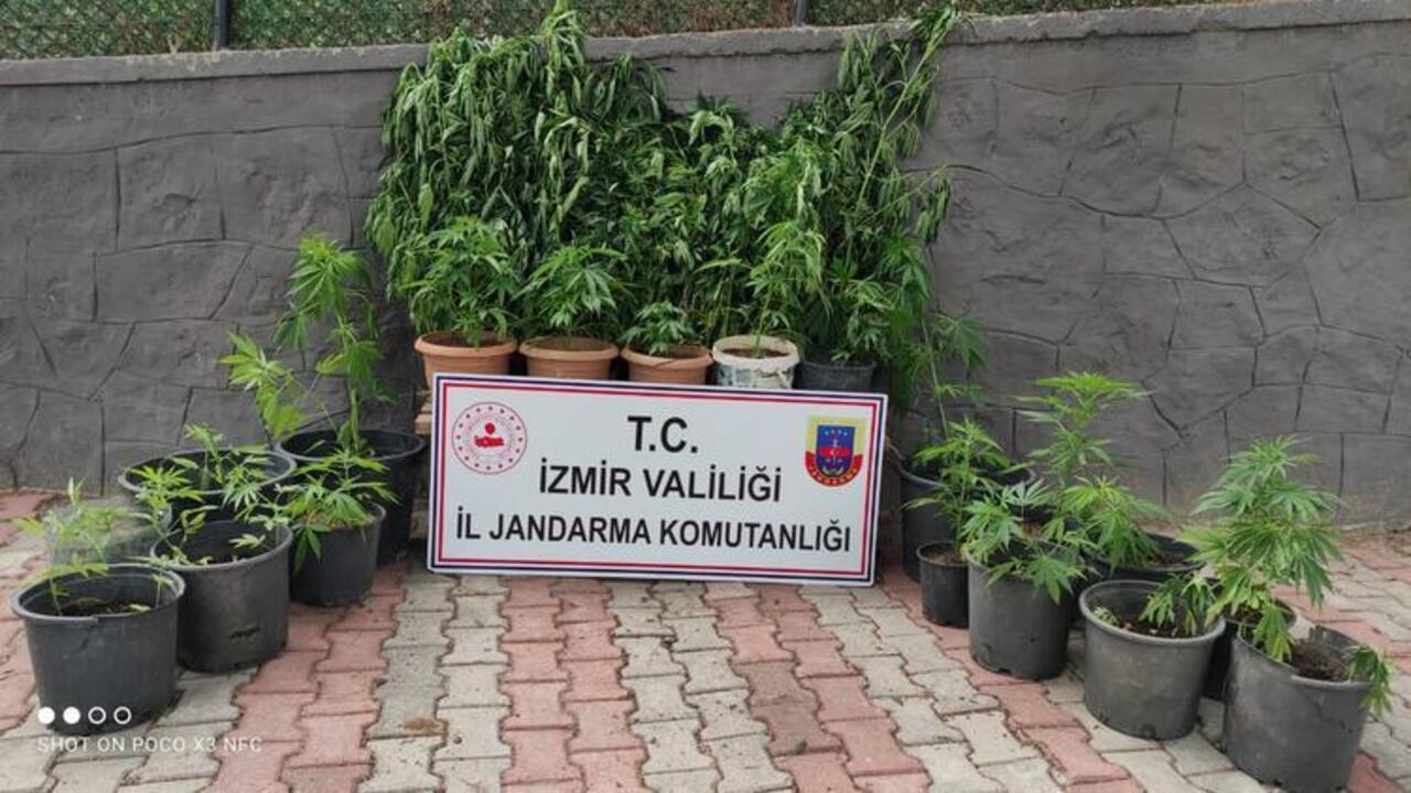 İzmir'de uyuşturucu operasyonu sonucu 11 kişi gözaltına alındı